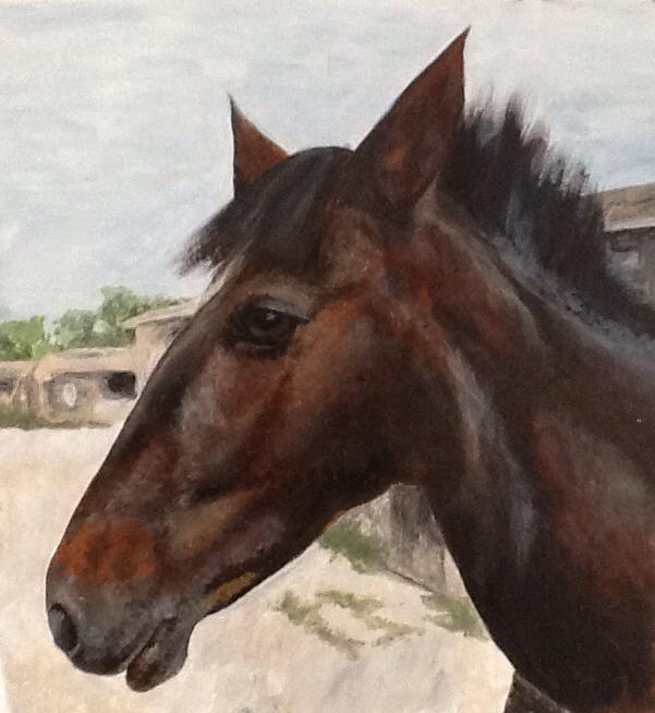 Horse for Helen